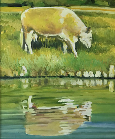 cow on the banks of the cam