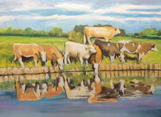 cows by river
